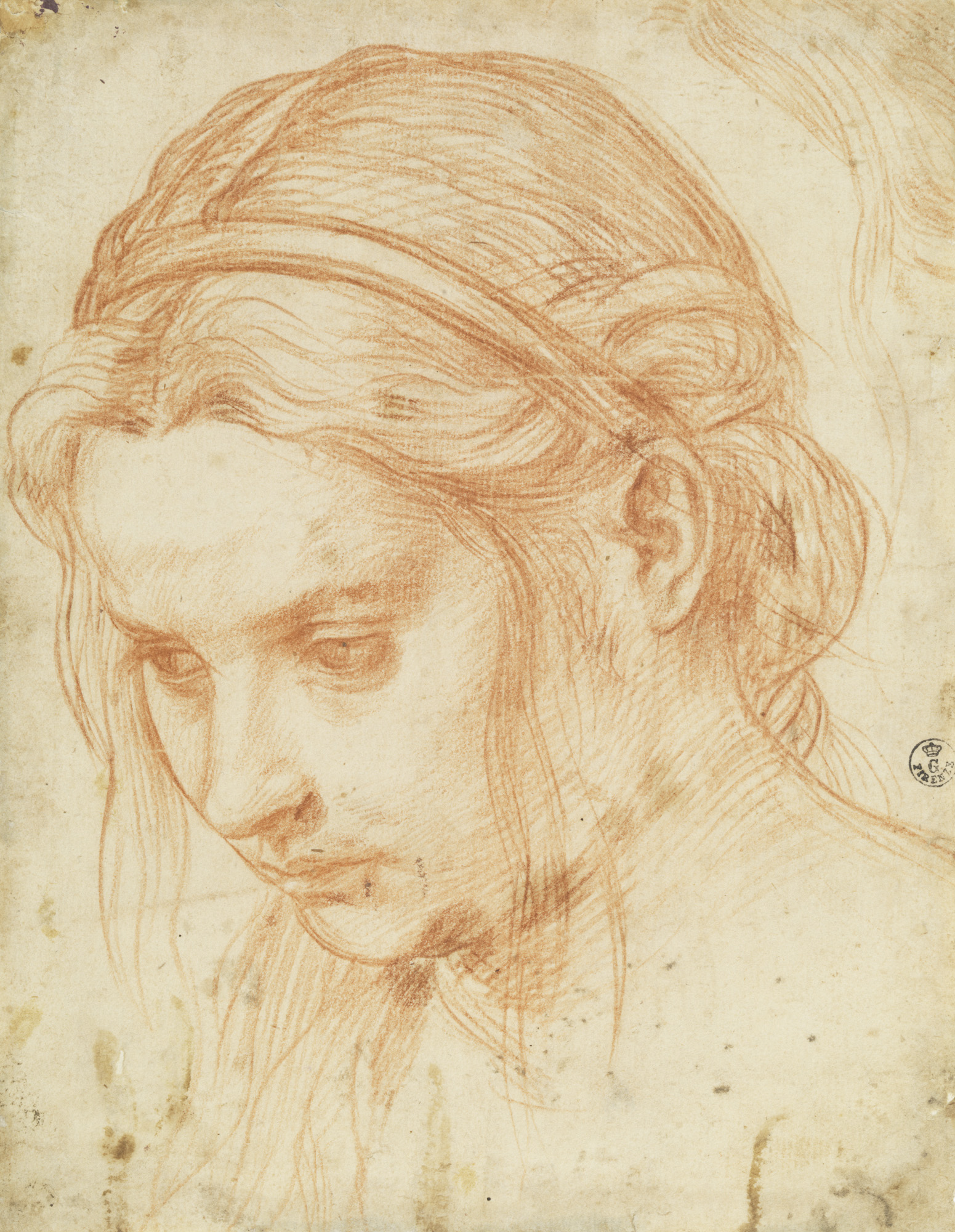 Andrea del Sarto, Study of the Head of a Young Woman, ca. 1523, red chalk, 8 9/1