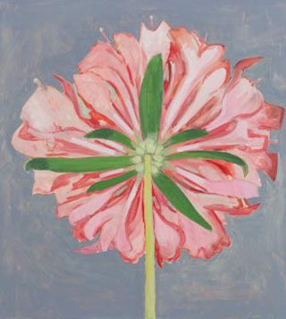Lois Dodd, Pink Scabiosa, Back View, 2013, oil on panel, 20 x 18.25 inches (cour