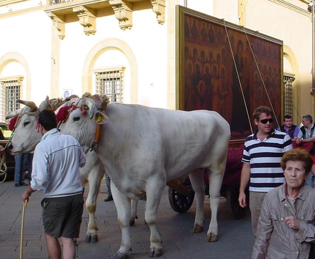 Reproduction of Duccio's Maesta en route to the Duomo in Siena in 2011 (photo: J