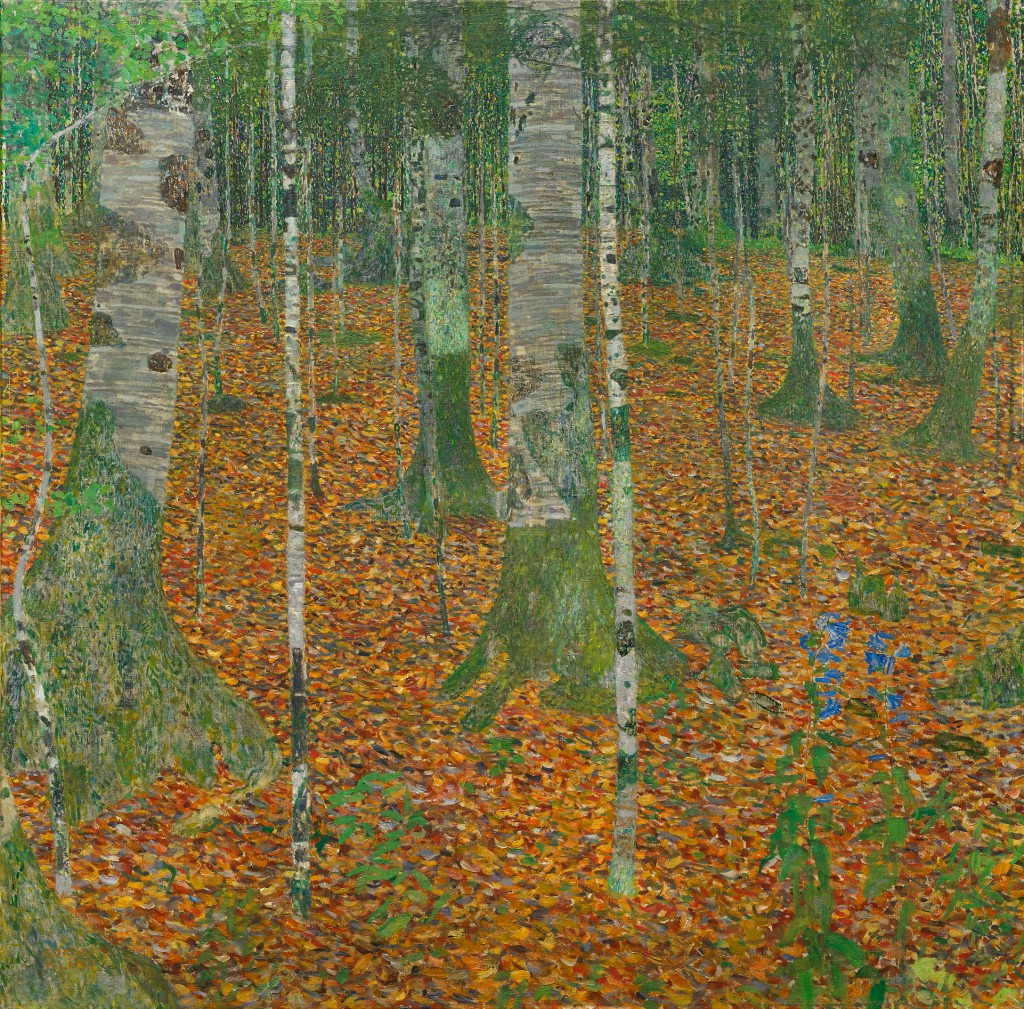 Gustav Klimt, Birch Forest, 1903, oil on canvas, 42 1/4 x 42 1/4 inches (Paul G.