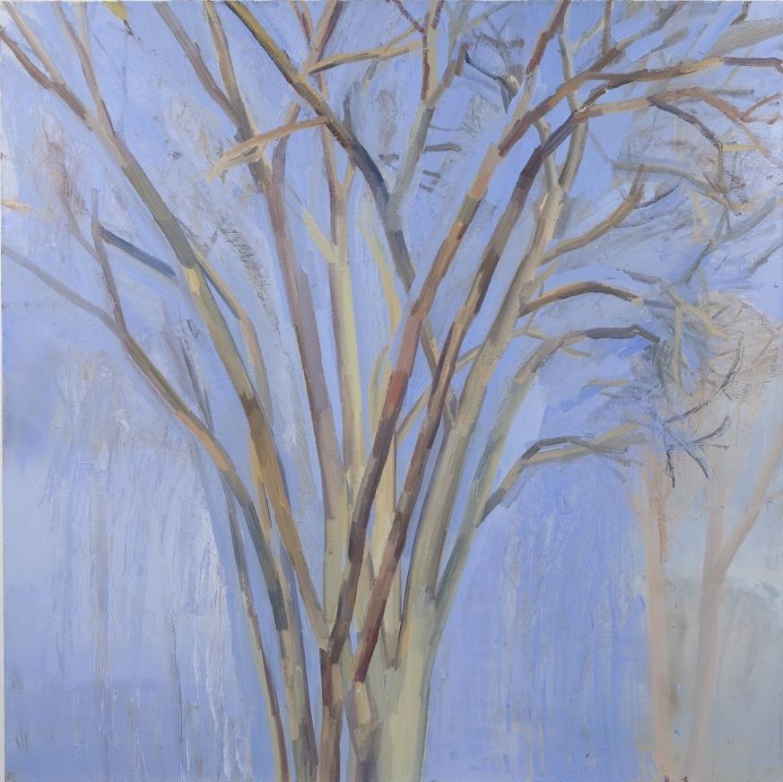 Sylvia Plimack Mangold, The Elm Tree (Winter), 1990-93, oil on linen, 72 x 72 in