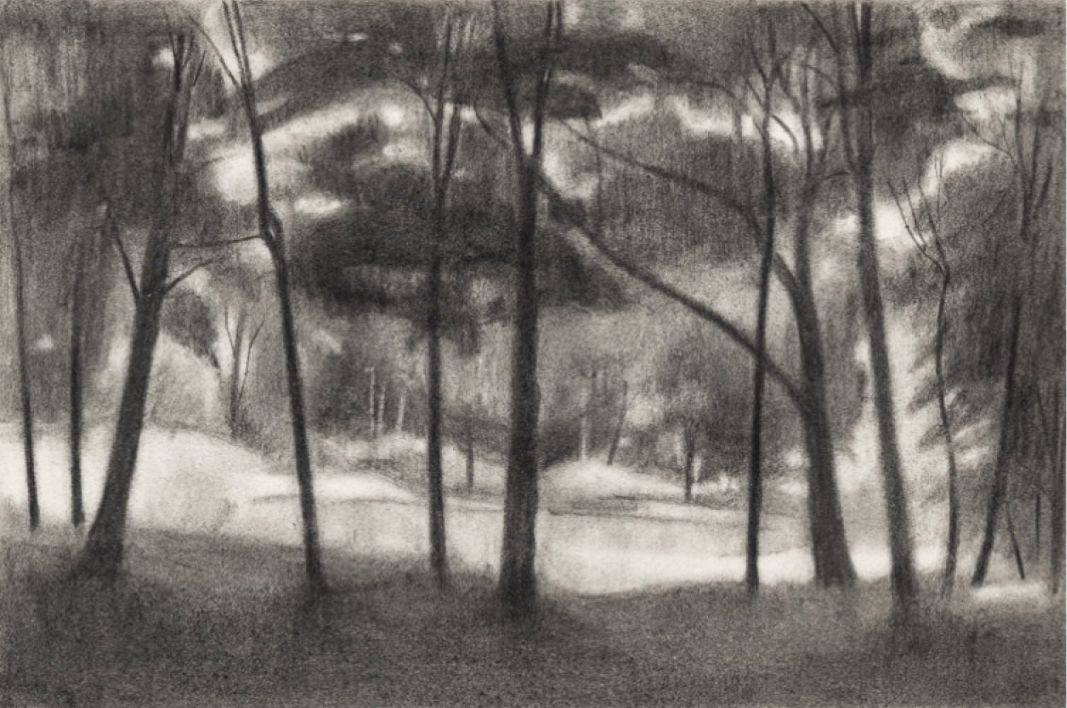 Ron Milewicz, Trees and Pond, 2018, pencil on paper, 12 x 18 inches