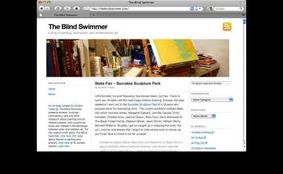 The Blind Swimmer blog
