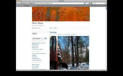 Slow Muse art blog