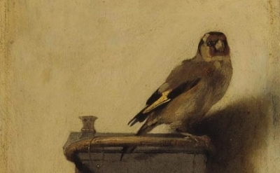 (detail) Carel Fabritius, The Goldfinch, 1654, oil on panel, The Mauritshuis Mus