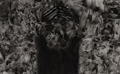 Jasper Johns: Untitled, 2013 (courtesy of the artist)