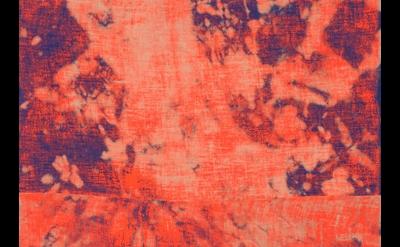 (detail) Evan Nesbit Porosity (Manic Panic), 2014, acrylic and dye on burlap, 79