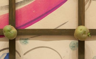 Installation view of  Alibis: Sigmar Polke 1963–2010 The Museum of Modern Art, A