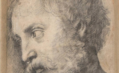 (detail) Raphael, A study for the head of an apostle (possible St Thomas) in the 'Transfiguration', c.1519