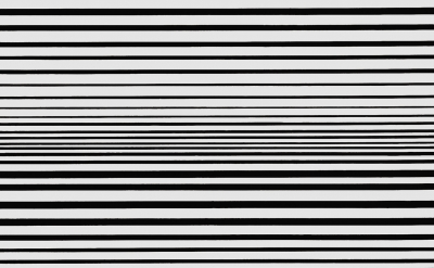(detail) Bridget Riley, Horizontal Vibration, 1961 Private collection. (© Bridge