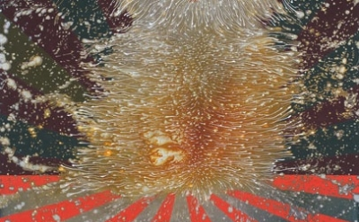 Barbara Takenaga, Harmo, 2013, acrylic on linen, 42 x 36 inches (courtesy of the