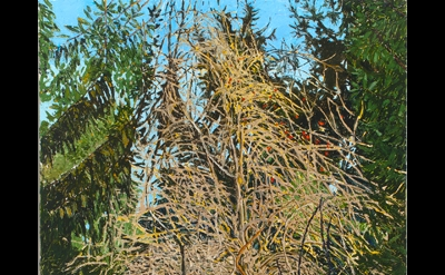 Margaret Grimes, Baldwin Hill Road, February, 2010, oil on linen, 72 x 48 inches