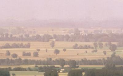 (detail) Israel Hershberg, Aria Umbra I, 2003 - 2004, oil on linen, 119 x 250.5