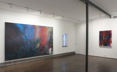 Tom McGrath: Profiles in Fugitive Light, installation view, 2012, Sue Scott Gall