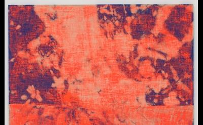 Evan Nesbit Porosity (Manic Panic), 2014, acrylic and dye on burlap, 79 x 68 inc