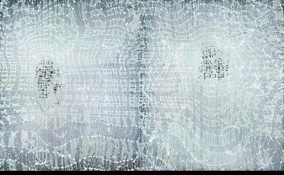 Barbara Takenaga, White Grid on Silver, 2013, acrylic on linen, 54 x 90 inches (