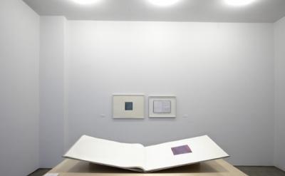 Callum Innes, Colm Toíbín installation at Sean Kelly Gallery