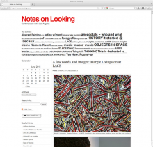Notes on Looking art blog