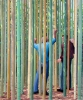 Maud Gatewood, In Timber Bamboo, 2000, acrylic on canvas (Weaver Foundation, col