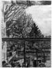 Stanley Lewis, Looking East Through Kitchen Window with Overhang, 2010, ink on paper, approx. 24 x 18.5 inches (From the Louis-Dreyfus Family Collection, courtesy of The William Louis-Dreyfus Foundation Inc.)