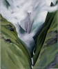 Georgia O'Keeffe, Waterfall—No. III—'Iao Valley, 1939, oil on canvas, 24 1/4 x 20 inches (Honolulu Museum of Art, Gift of Susan Crawford Tracy, 1996 (8562.1)