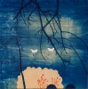 Casey Roberts, The Witnesses, 2012, cyanotype drawing with gouache on paper, 53
